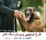 طرح-توجیهی-پرورش-سگ-آموزش-دیده-به-ظرفیت-50-قلاده-سال-97